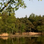 oisterwijkse bossen en vennen